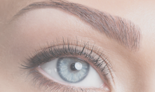 Eyebrow wax, shape, brow tint Greensboro, NC - Brow Lounge